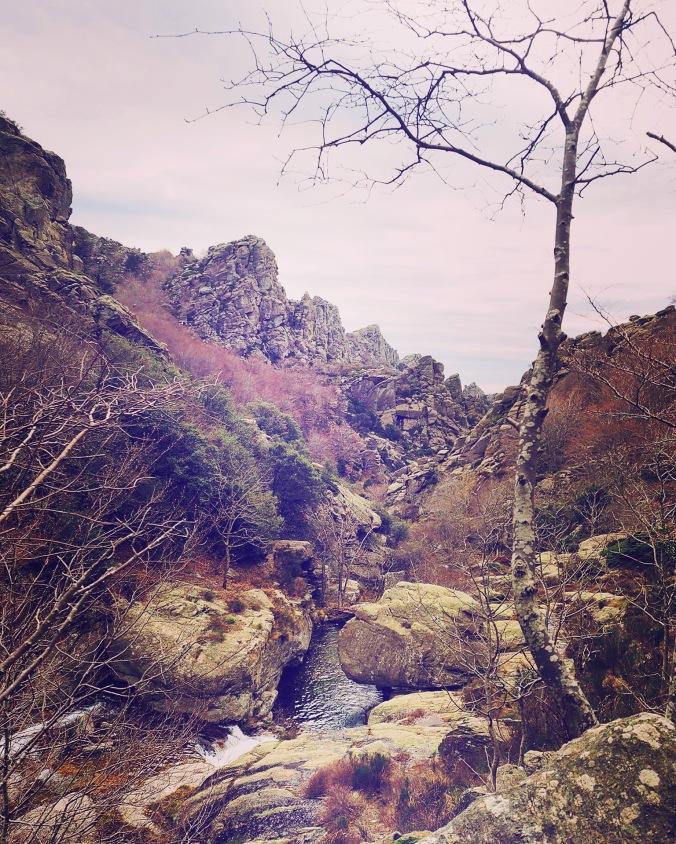 randonnée Mont Caroux Occitanie