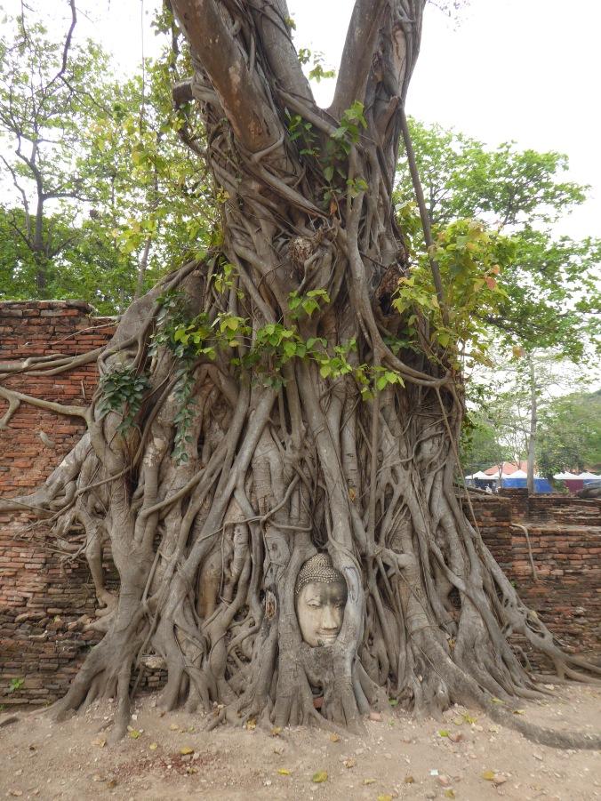 visiter Ayutthaya à vélo